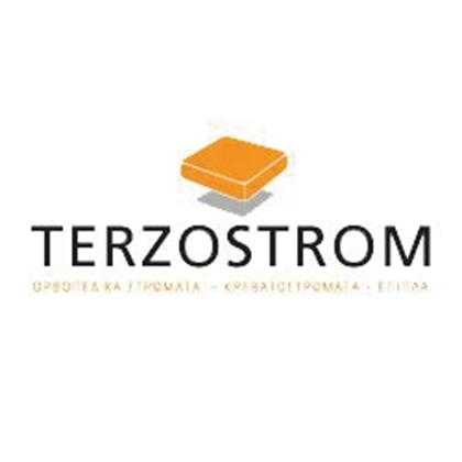 Picture for manufacturer TERZOSTROM